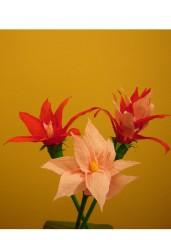Tri cveta