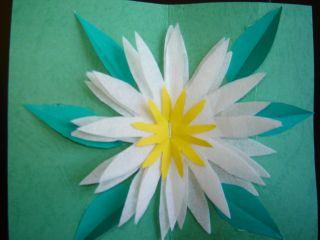 zaheftan cvet